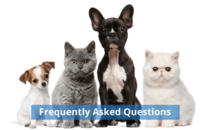 pet cloning pet genetic preservation frequently asked questions