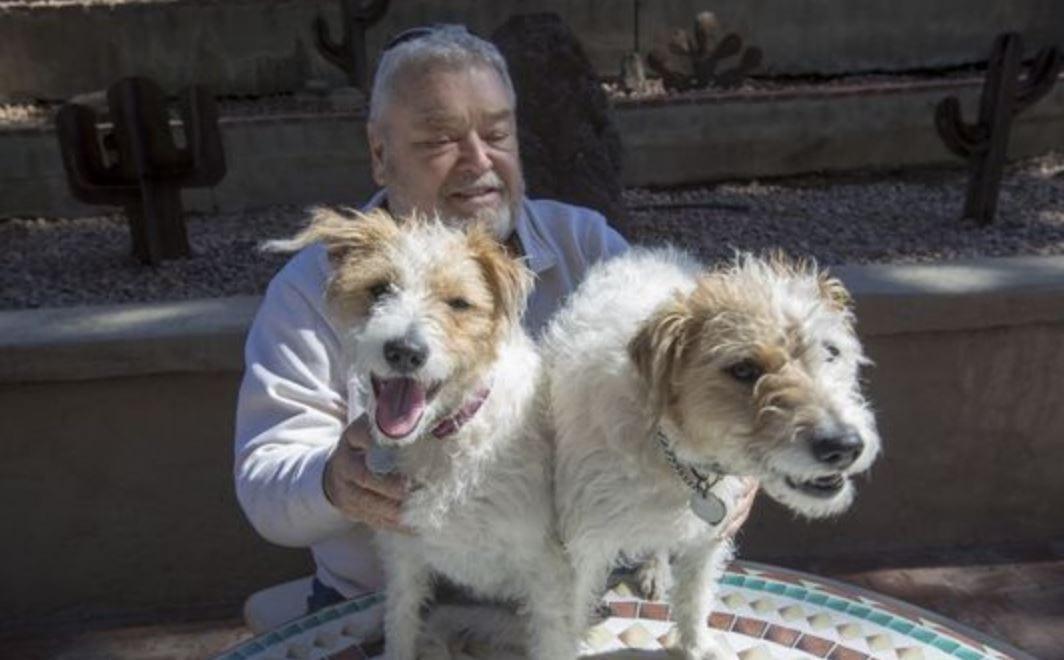 arizonan clones dog